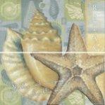 mosaic2a56202faaaf416a834a7042f2221b43.j